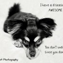 """The """"Awesome"""" Disease"""