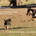 be-brave
