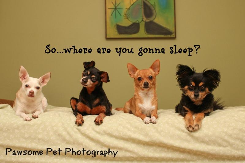 Where r u gonna sleep